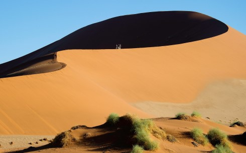 ©-Wildernes-Big-Daddu-Sands-Dune